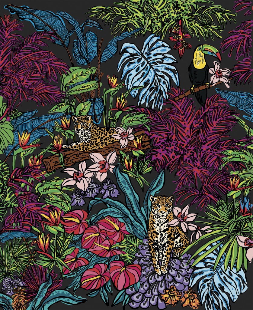 MIDNIGHT JUNGLE COLOUR online